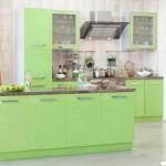Кухня Глосс - цветы авокадо