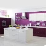 Кухня Глосс - цветы ежевика-магнолия