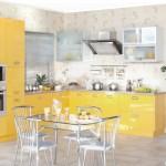 Кухня Глосс - цветы желтый