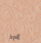 Кухня техно древесные декоры (1)